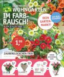 OLDENBURGER WOHNGARTEN GmbH & Co. KG Im Farbrausch - bis 28.05.2020