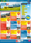 HOFER Flugblatt - bis 31.05.2020
