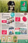 Kiebitzmarkt Angebote Freystadt - bis 22.06.2020