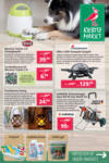 Kiebitzmarkt Angebote Rhede - bis 14.06.2020