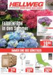HELLWEG Baumarkt Wochenangebote - bis 30.05.2020