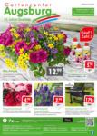 Gartencenter Augsburg Wochenangebote - bis 31.05.2020