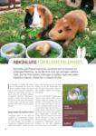 ZOO & Co. Das Magazin für Tierfreunde - bis 02.09.2020