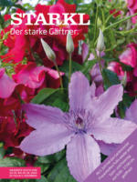 Starkl Flugblatt - gültig bis 18.6.