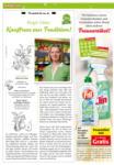 Nah&Frisch Nah&Frisch Kastner - 3.6. bis 9.6. - bis 09.06.2020
