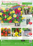 Gartencenter Augsburg Wochenangebote - bis 14.06.2020
