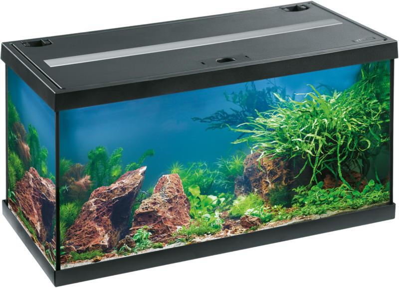 EHEIM Aquarium Aquastar 54 LED schwarz