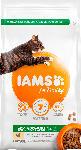 dm-drogerie markt IAMS Trockenfutter für Katzen, Adult, Proactive Health mit Huhn