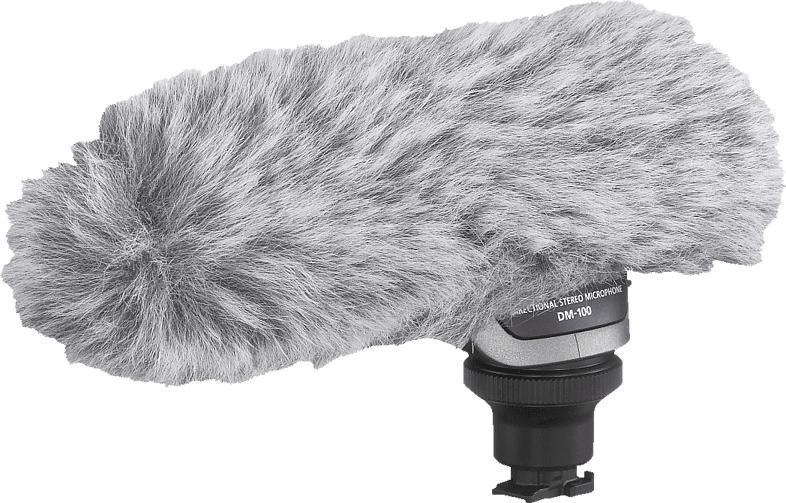 CANON DM-100, Stereo-Richtmikrofon, Weiß, passend für HF G20/HF G25/ HF-G 40
