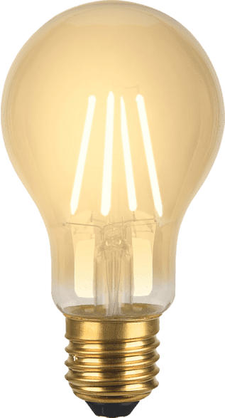XLAYER Smart Echo LED Lampe E27 Retro Smart Glühbirne