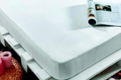 -20% auf alle Spannbetttücher der Marke Monnlight