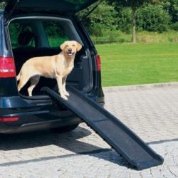 Trixie Rampe pour animaux Petwalk, 40 × 156 cm, 4,5 kg, noir