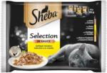 BILLA Sheba Selection in Sauce Geflügel Variation 4-Pack