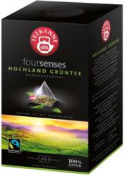 Teekanne Foursenses Hochland Grüntee