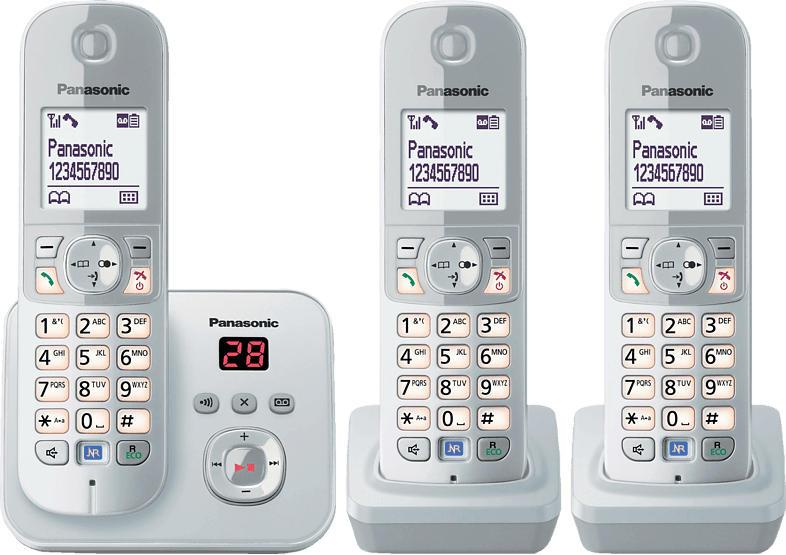 PANASONIC KX-TG 6823 GS Schnurloses Telefon