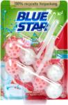 dm Blue Star pro nature WC-Reiniger Grapefruit