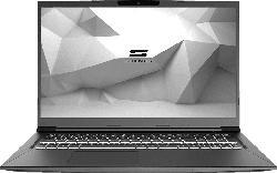 SCHENKER MEDIA 17 - E20sxd, Notebook mit 17.3 Zoll Display, Core™ i7 Prozessor, 16 GB RAM, 500 GB mSSD, GeForce GTX 1650 Ti, Schwarz