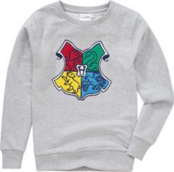 Harry Potter Sweatshirt mit Applikation