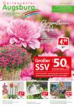 Gartencenter Augsburg Wochenangebote - bis 13.09.2020