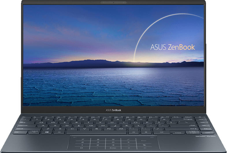 ASUS ZenBook 14 UX425EA-HM115T, Notebook mit 14 Zoll Display, Core i7 Prozessor, 16 GB RAM, 512 GB SSD, Intel® UHD Graphics, Pine Grey