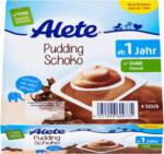 dm Alete Pudding Schoko