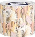 dm Soft&Sicher Taschentücher Oval-Box Classic sort.
