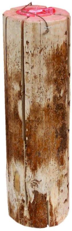 Schwedenfeuer, Ø 12-15 cm, Höhe 47cm 47 | 12