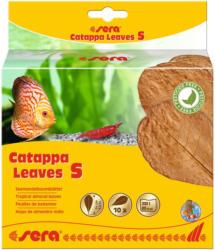 Catappa Leaves S 10 Stück
