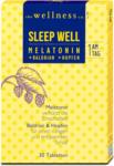 dm the wellness co. Sleep Well Melatonin Tabletten