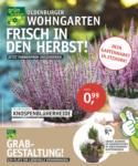 OLDENBURGER WOHNGARTEN GmbH & Co. KG Frisch in den Herbst! - bis 06.10.2020