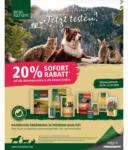 Fressnapf Real Nature Angebote - bis 11.10.2020