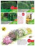 Ihr Gärtner Starkl Starkl - Aktuelle Angebote Oktober - bis 31.10.2020
