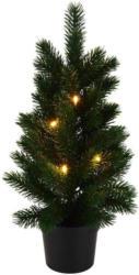 Weihnachtsbaum Basilius