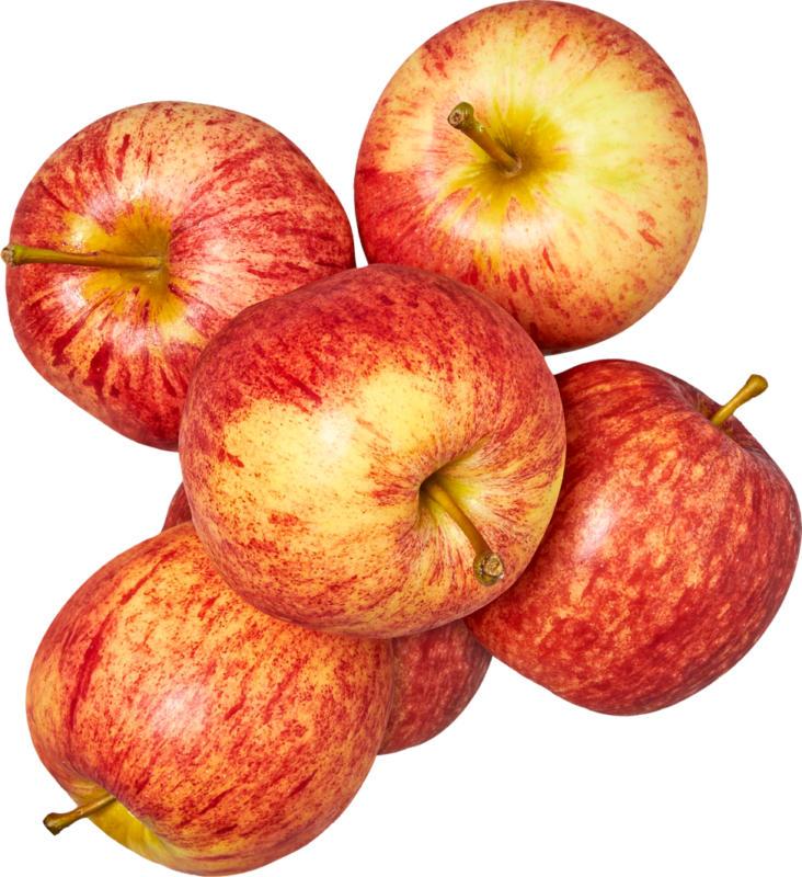 Äpfel , Klasse II, Schweiz, 1,5 kg