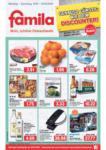 FAMILA Brake GmbH & Co. KG Angebote vom 19.10.-24.10.2020 - bis 24.10.2020