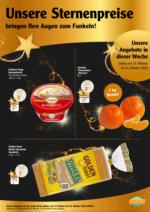 OnlineFaltblatt Sternenpreise