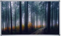 Infrarot Heizung 600 W Forest Fog 100x60 cm
