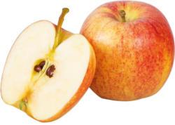 Da komm ich her! Boskoop Apfel gelegt aus Österreich