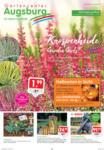 Gartencenter Augsburg Wochenangebote - bis 25.10.2020