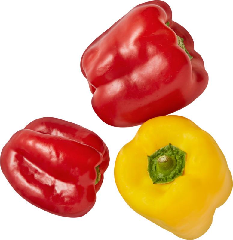Peperoni gemischt, Spanien, 500 g