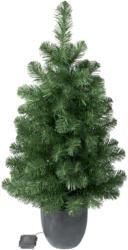 Kleiner Tannenbaum mit LEDs und Übertopf