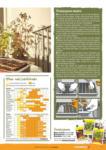 Hornbach Hornbach Projekt - Gartentrends - bis 31.03.2021