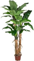 Kunstpflanze Palme H: 280 cm Grün