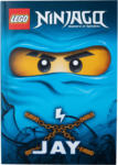 Ernsting's family Lego Ninjago Lesebuch Jay (Nur online)