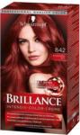 BILLA Brillance Intensiv-Color-Creme Nr. 842 Kaschmirrot