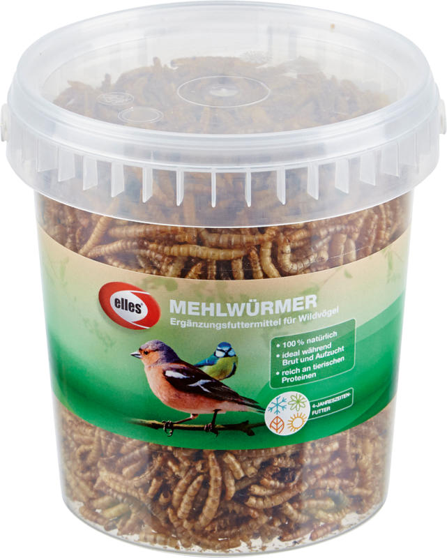 elles Futter für Vögel, Mehlwürmer