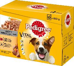 Pedigree Nassfutter für Hunde, Adult Auswahl in Pastete, Multipack, 12x100g