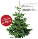 XXXLutz Villach Weihnachtsbaum