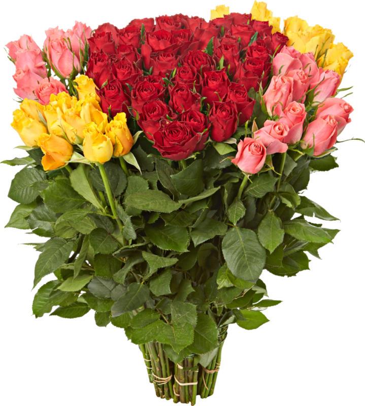 Roses premium, Botte de 10 pièces, 60 cm