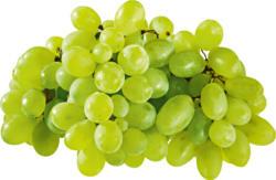 Raisins blancs, sans pépins, provenance indiquée sur l'emballage, 500 g